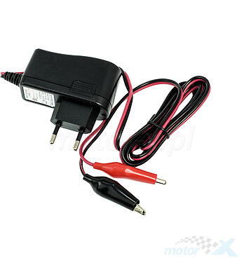 Battery charger 12V 1A